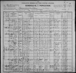 1900 Census-Francois Chatelle